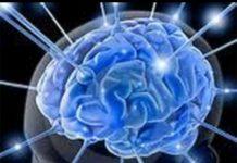 Dispositivo en el cerebro