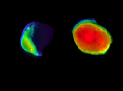Luna llena en Marte